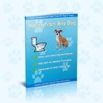 House Train Any Dog