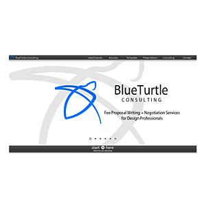 Blue Turtle Managment